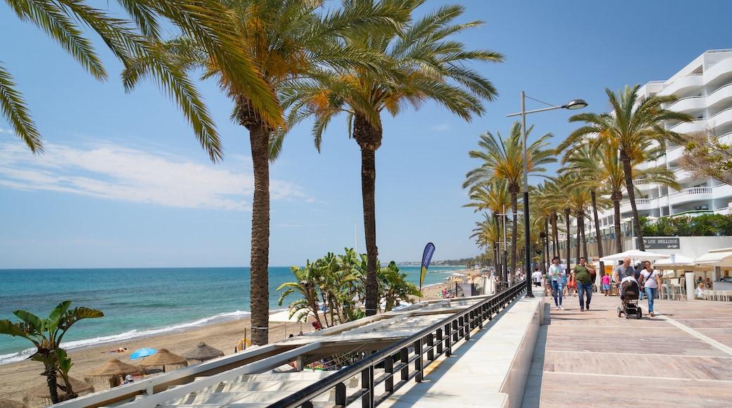 Marbella Seafront Promenade