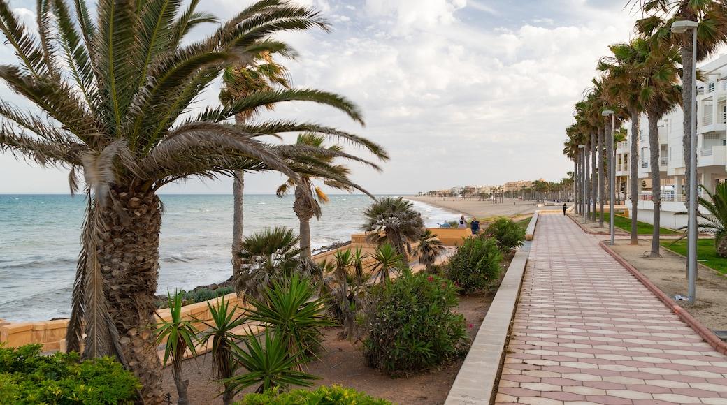 Roquetas de Mar showing general coastal views and a coastal town
