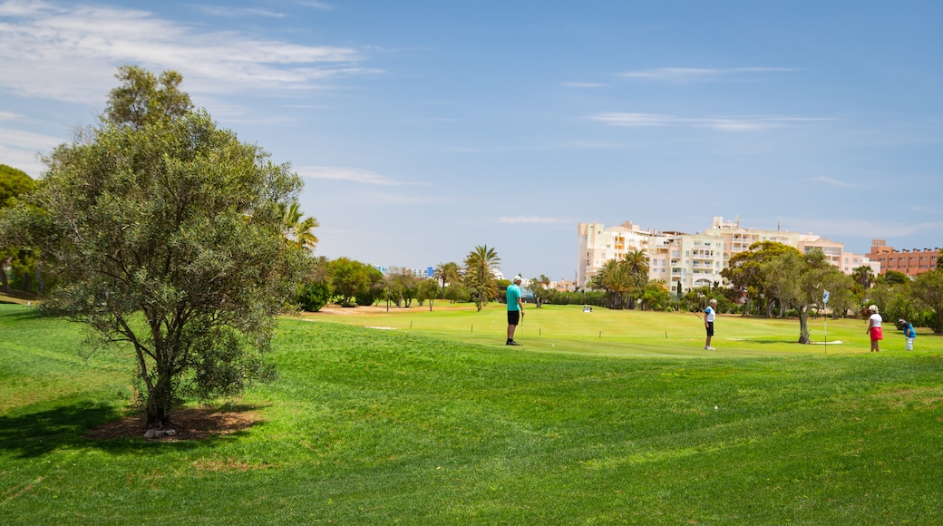 Playa Serena Golf Course showing golf as well as a small group of people