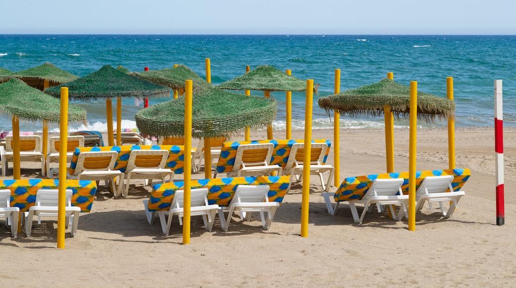 Playa Serena featuring a sandy beach and general coastal views