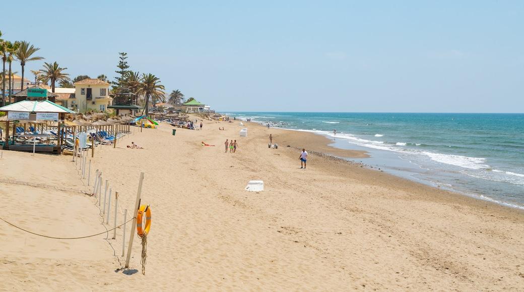Nikki Beach which includes a sandy beach and general coastal views