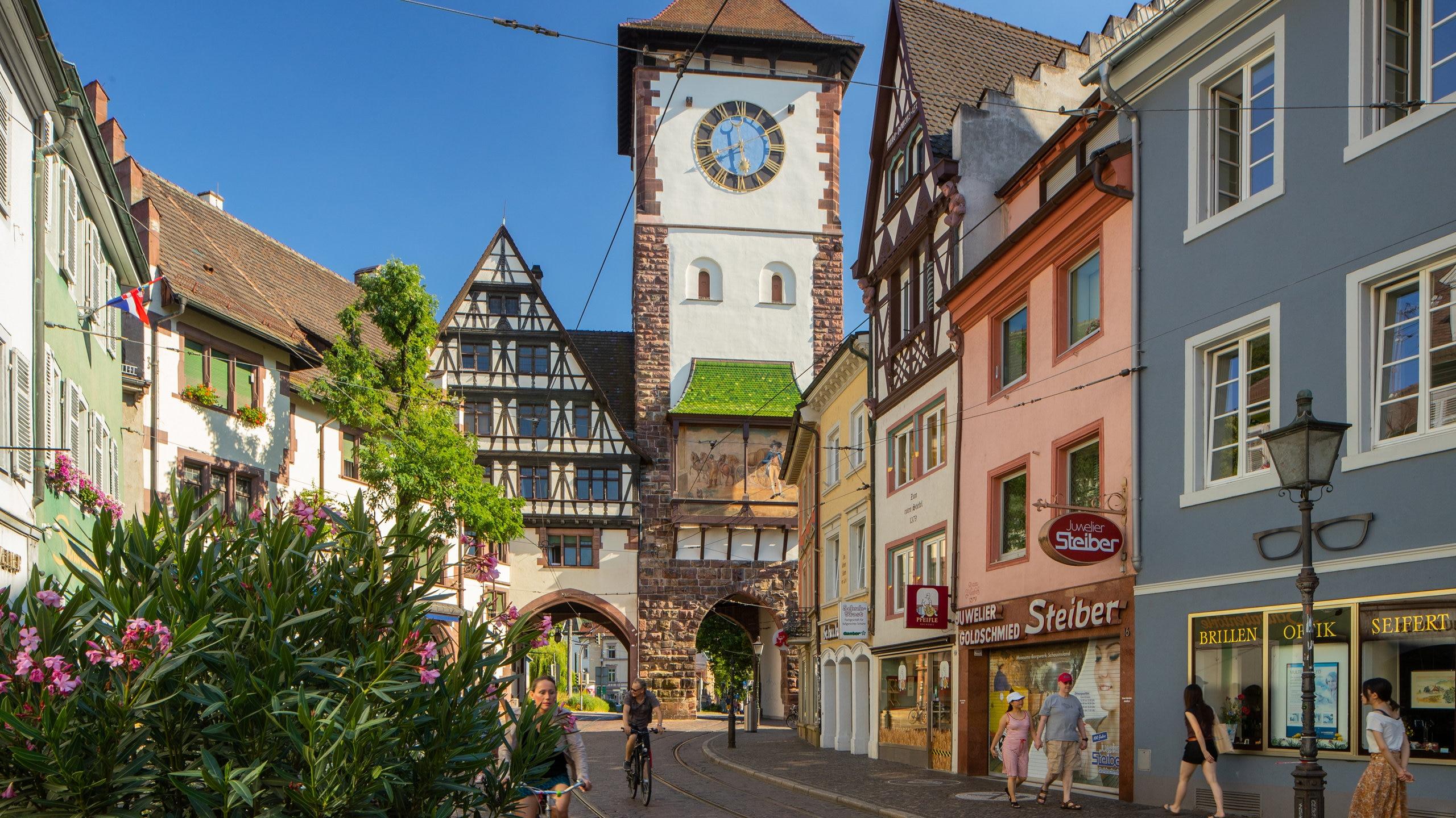 villa de lux freiburg