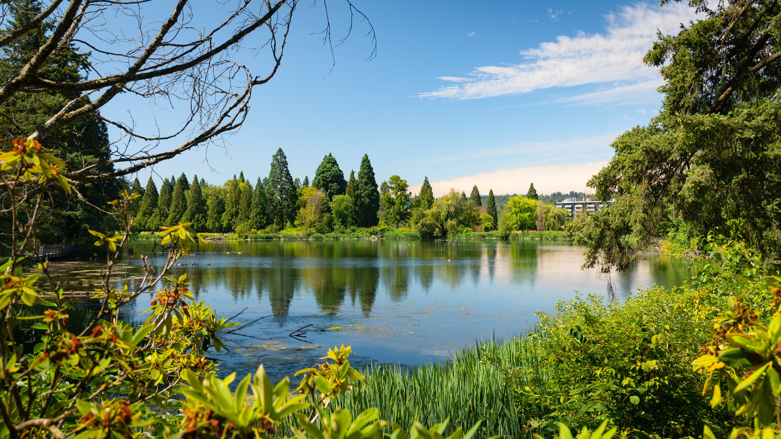 Crystal Springs Rhododendron Garden, Eastmoreland, Oregon, United States of America