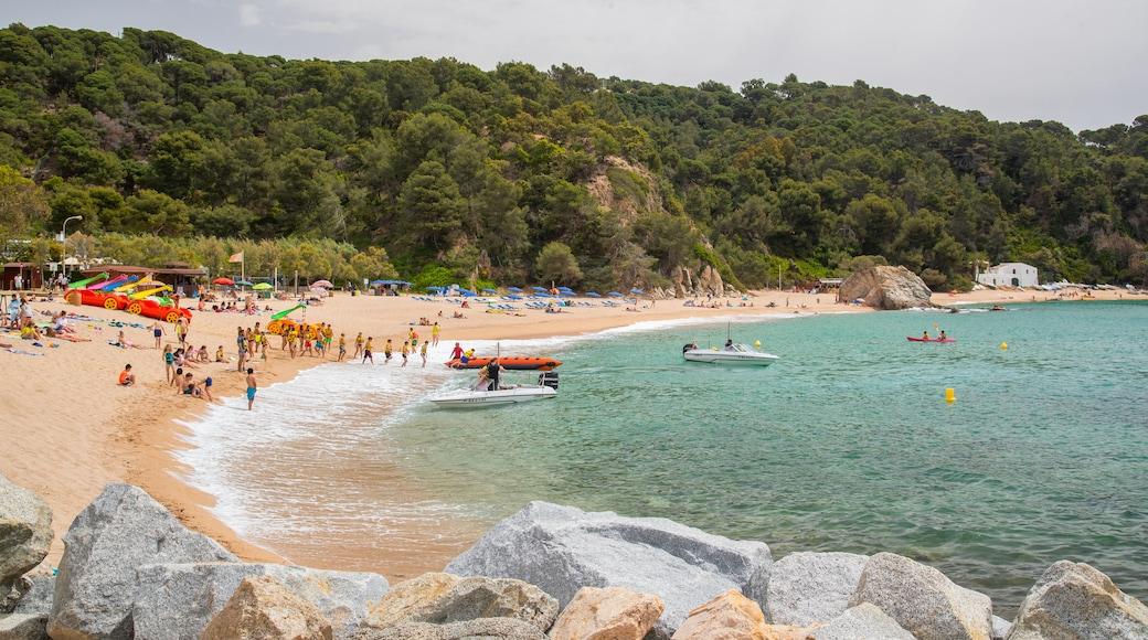 Strand van Cala Canyelles