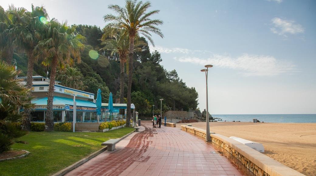 Fenals Beach