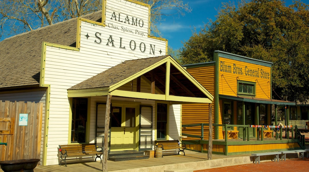 Dallas Heritage Village which includes heritage architecture, rides and a small town or village