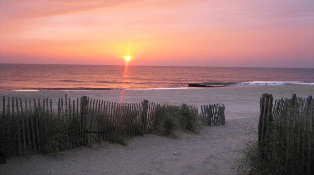 Rehoboth Beach featuring general coastal views, a sunset and a beach