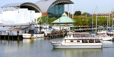 Hampton which includes modern architecture, a marina and boating