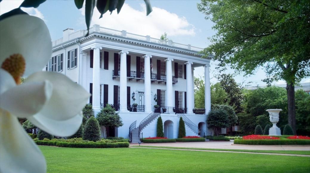 Tuscaloosa showing heritage architecture