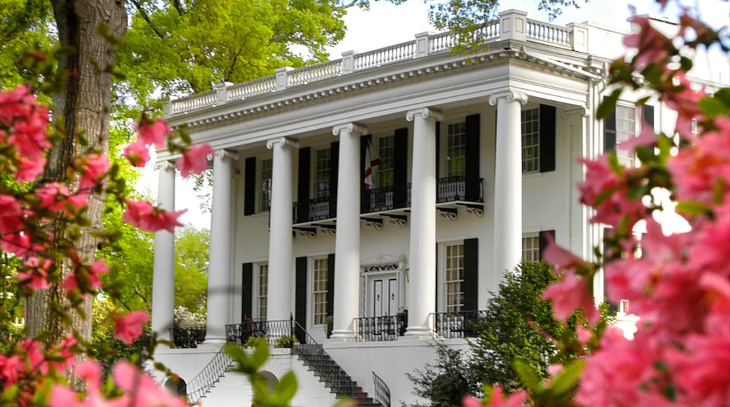 Tuscaloosa showing flowers, a house and heritage architecture