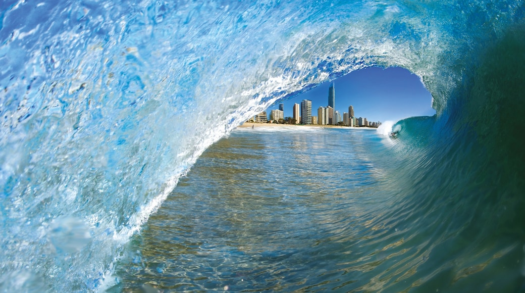 Plage de Surfers Paradise qui includes vagues