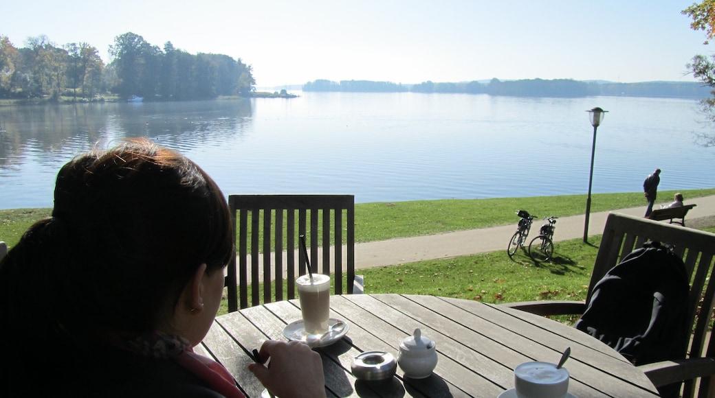 Bad Saarow mit einem Café-Szenerien und See oder Wasserstelle sowie einzelne Frau