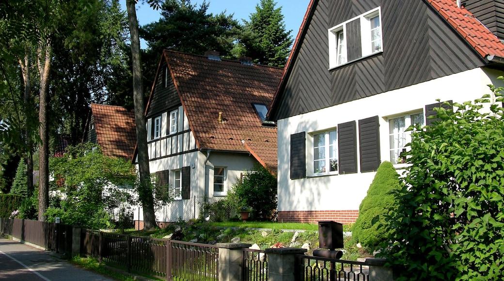 Kleinmachnow welches beinhaltet historische Architektur, Haus und Straßenszenen