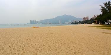 黃金泳灘 呈现出 海灘 和 熱帶風景