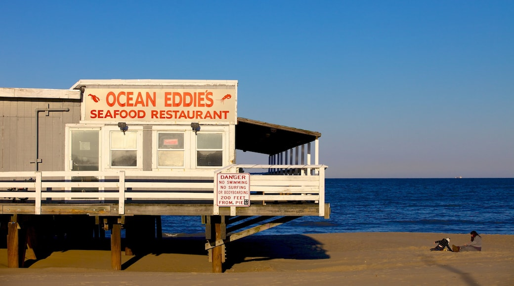 Virginia Beach showing a sandy beach and signage