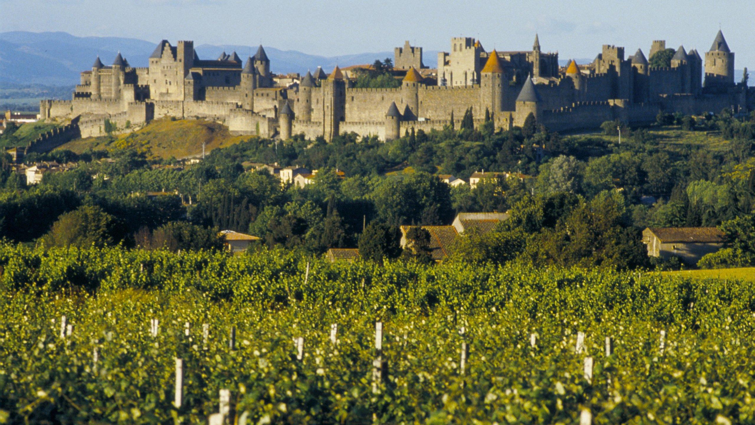 Bastide Saint-Louis, Carcassonne, Aude, France