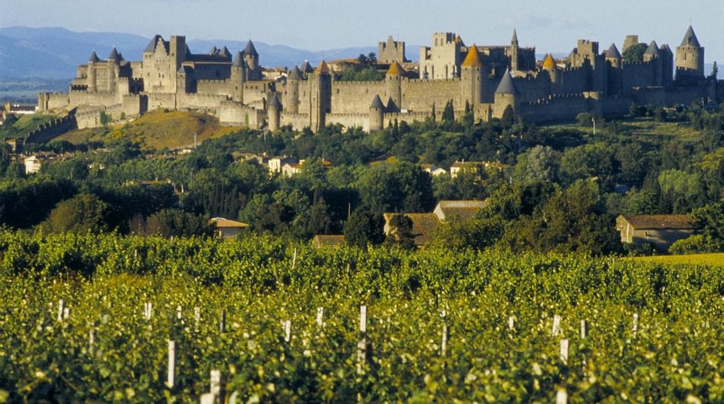 Carcassonne qui includes patrimoine architectural, château ou palais et panoramas