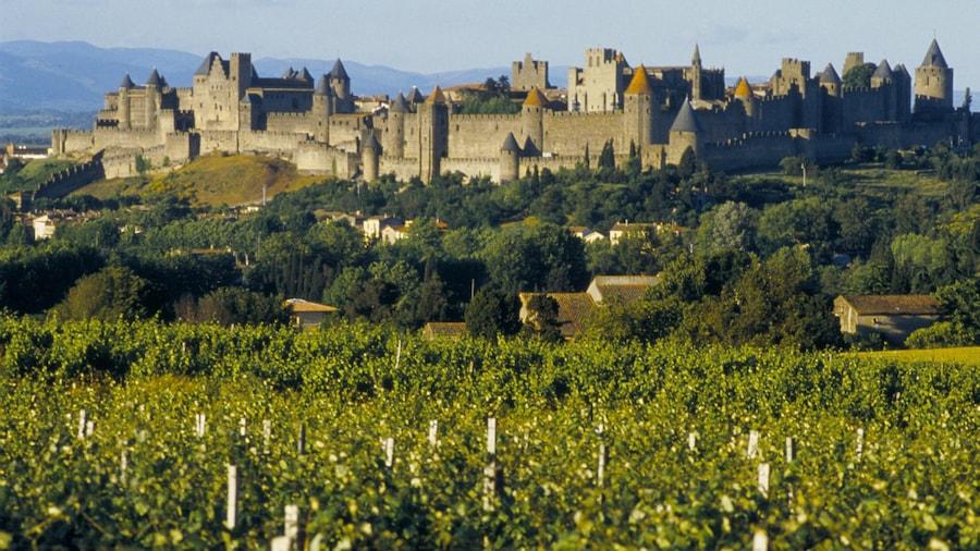 Carcassonne bevat landschappen, een kasteel en historische architectuur