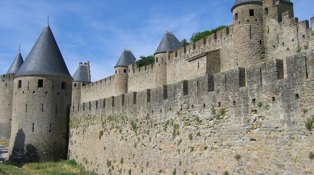 Carcassonne montrant château et patrimoine architectural