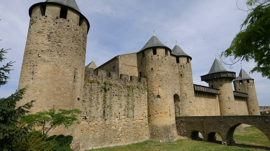 Carcassonne featuring heritage architecture and a castle