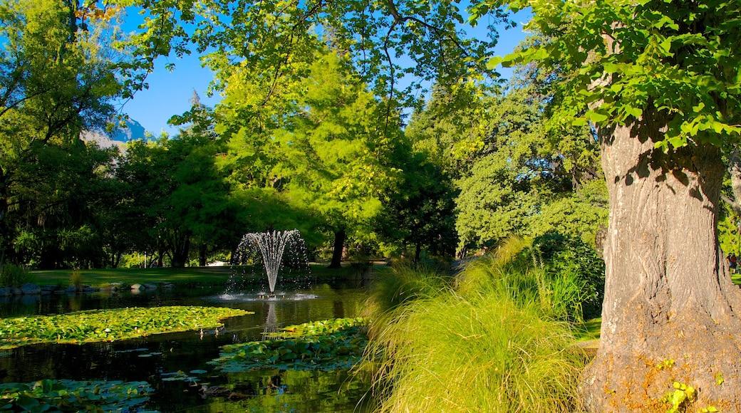 Queenstown Gardens showing landscape views and a garden