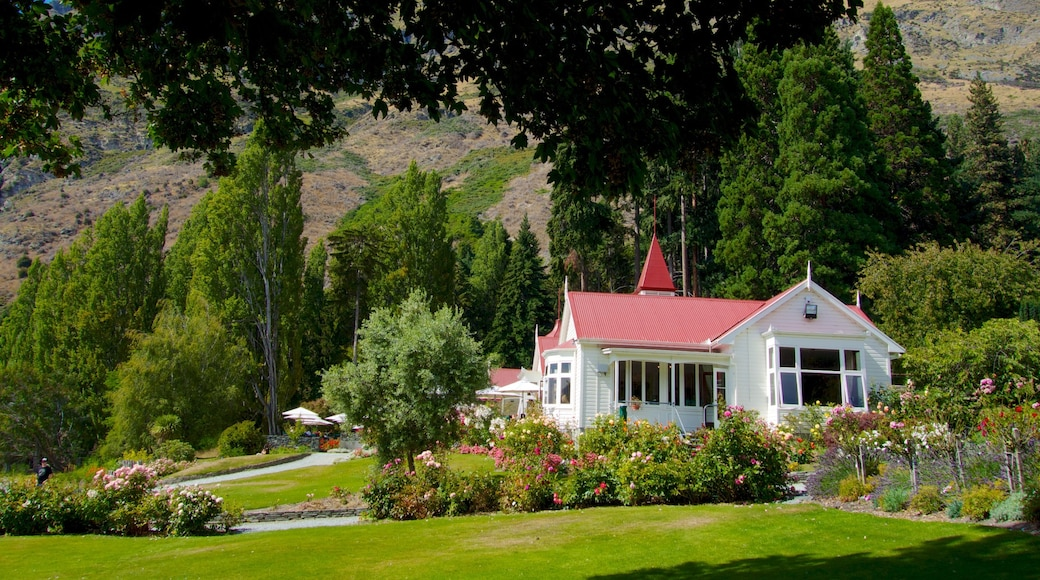 Walter Peak High Country Farm showing tranquil scenes