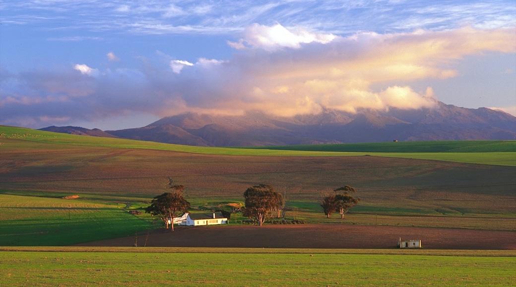 Caledon che include vista del paesaggio e paesaggi rilassanti
