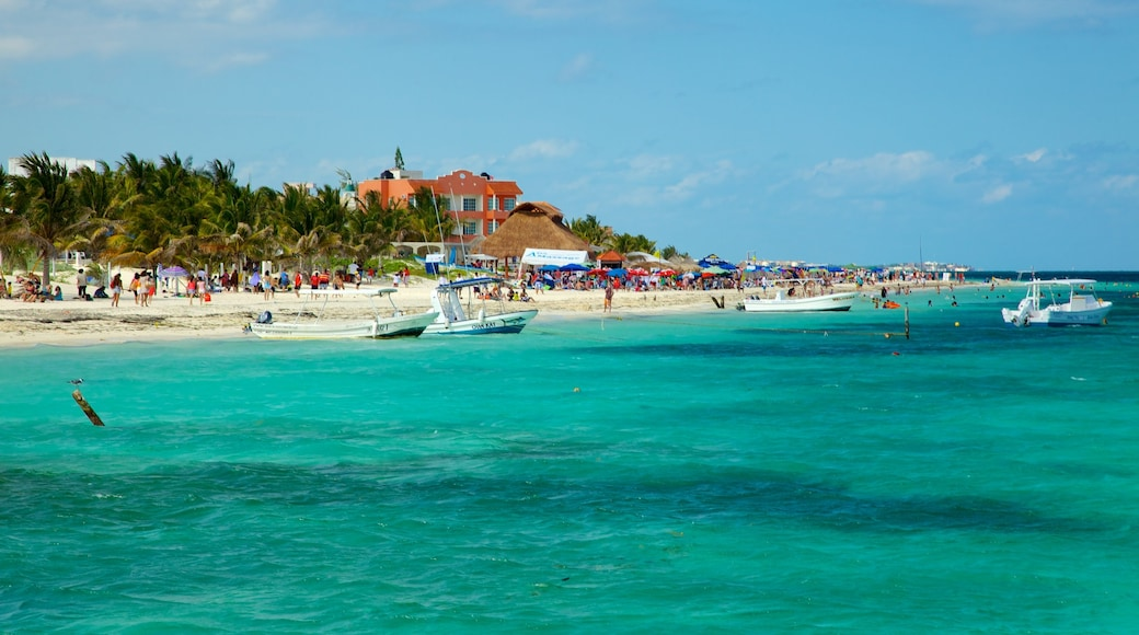 Puerto Morelos featuring a coastal town, a sandy beach and tropical scenes