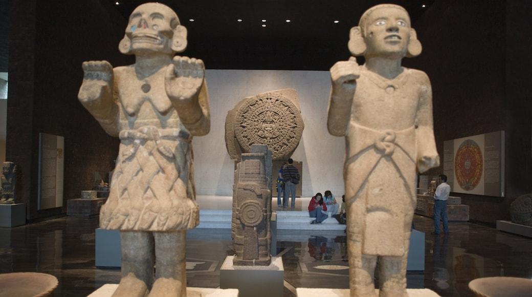 Museo Nacional de Antropologia caratteristiche di vista interna e arte