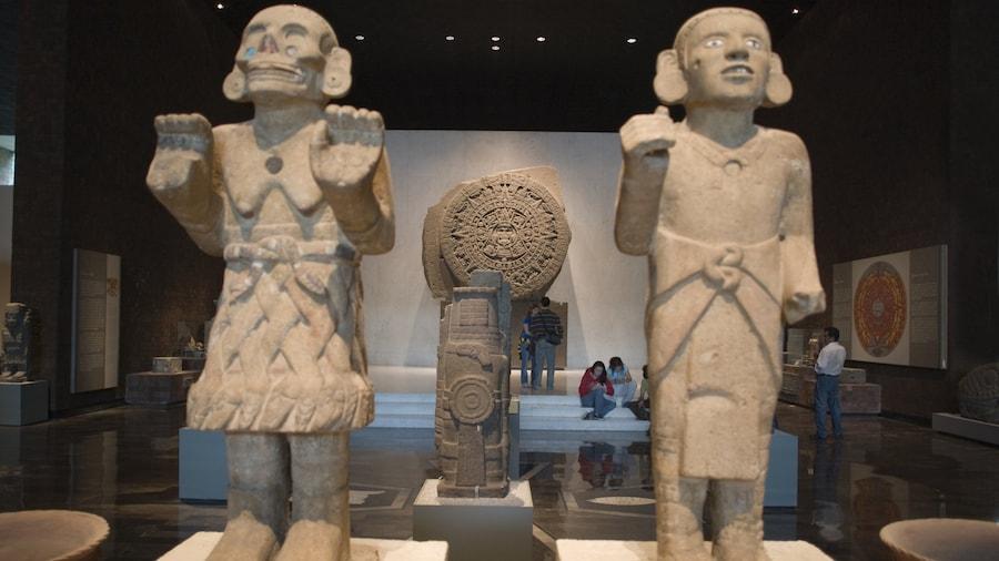 Museo Nacional de Antropologia featuring interior views and art