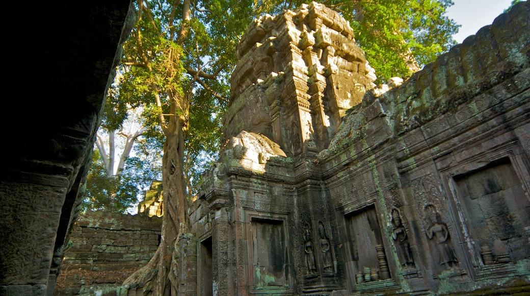 Tempio di Ta Prohm mostrando tempio o luogo di culto e religiosità