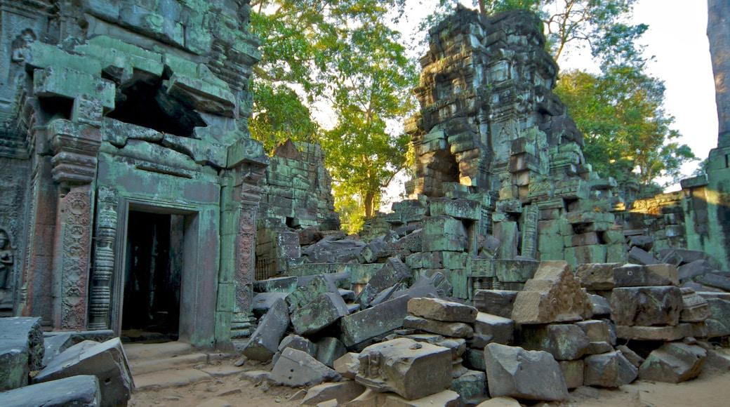 Tempio di Ta Prohm mostrando rovine di un edificio e monumento