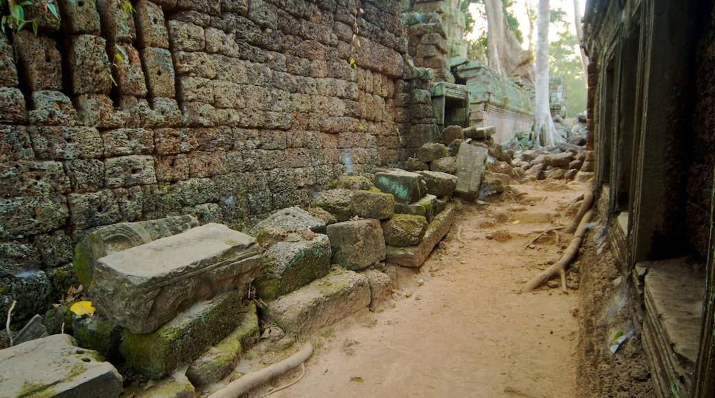 Tempio di Ta Prohm caratteristiche di rovine di un edificio