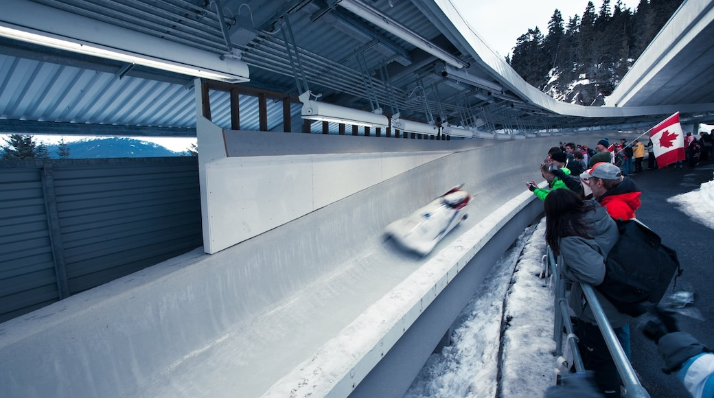 Whistler Sliding Centre which includes snow and a sporting event as well as a large group of people