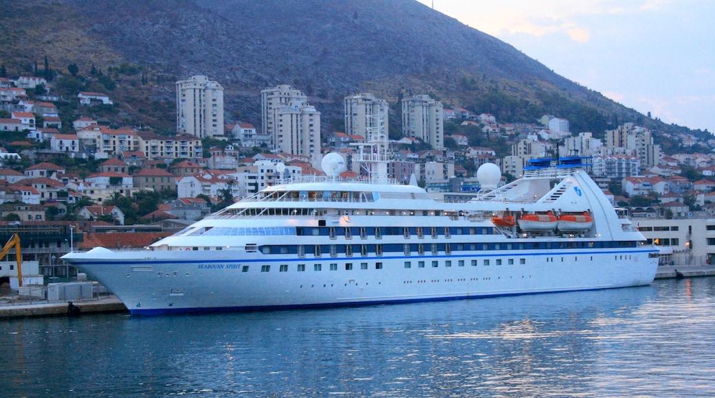 Porto di Gruz mostrando crociera e baia e porto