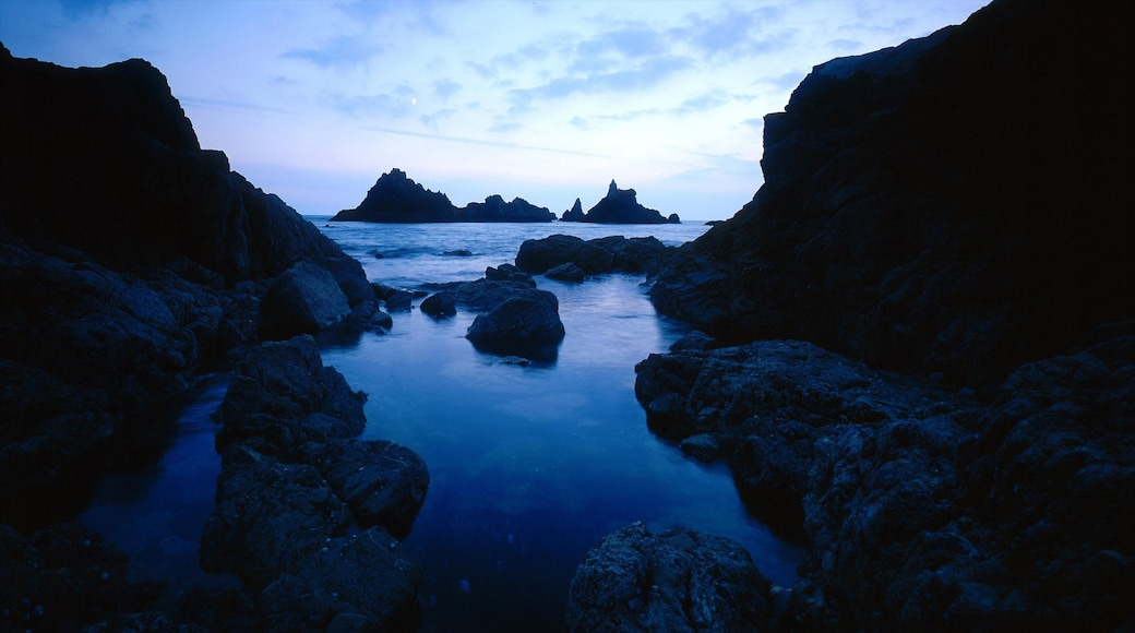 Waterford showing landscape views, rocky coastline and a sunset