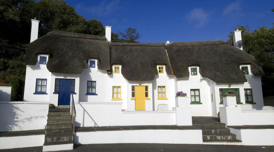 Waterford showing a small town or village, a house and heritage architecture