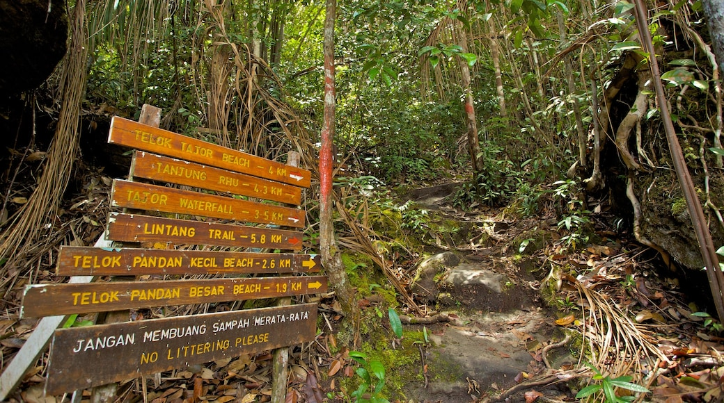 Bako National Park showing signage, forest scenes and a park