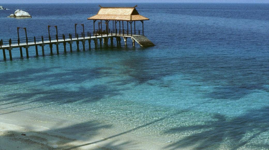 Pulau Perhentian Besar montrant scènes tropicales et plage de sable