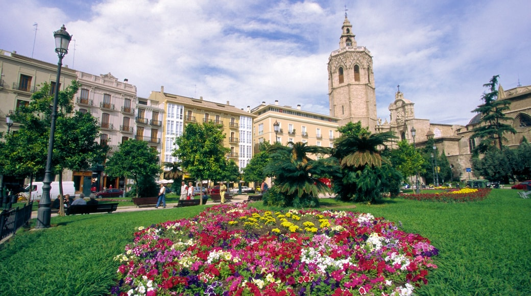 Plaza de la Reina showing a church or cathedral, flowers and heritage architecture