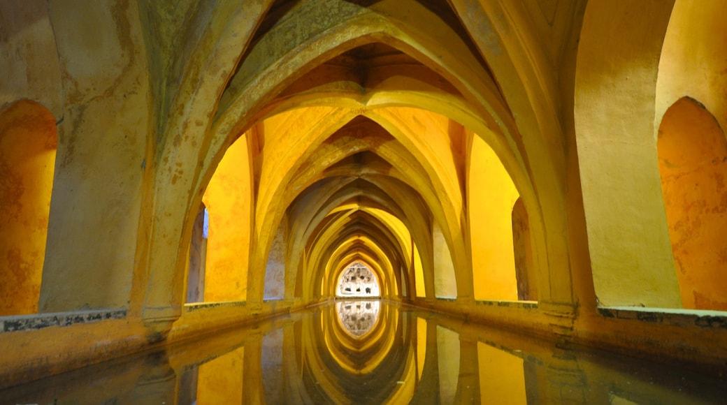 Alcázar featuring sisäkuvat, vanha arkkitehtuuri ja linna