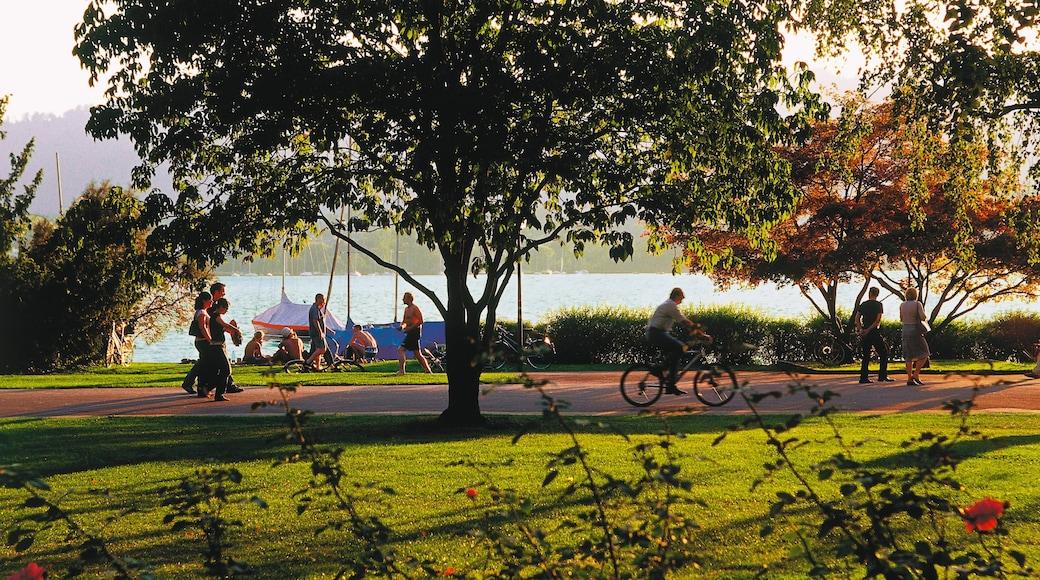 Lago de Zurique que inclui um lago ou charco, ciclismo e um jardim