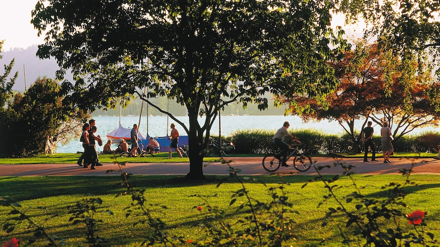 Lake Zurich featuring a lake or waterhole, a garden and cycling