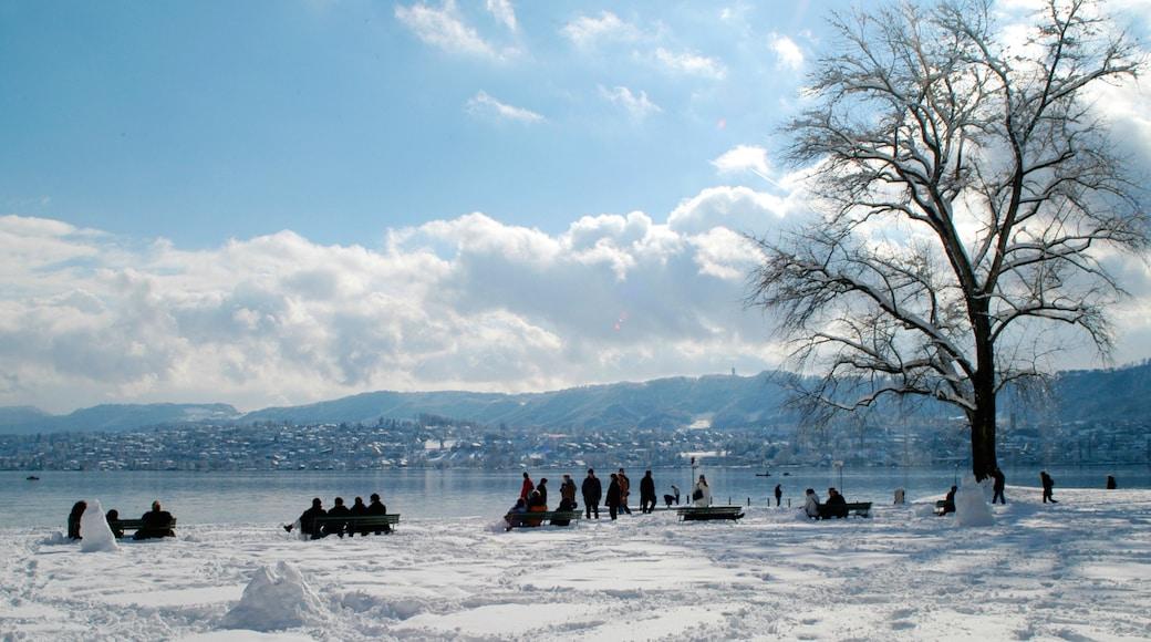 Lago de Zurique caracterizando escalada ou caminhada, neve e snowshoe