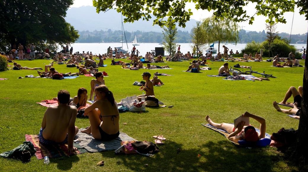 Lago de Zurique assim como um grande grupo de pessoas