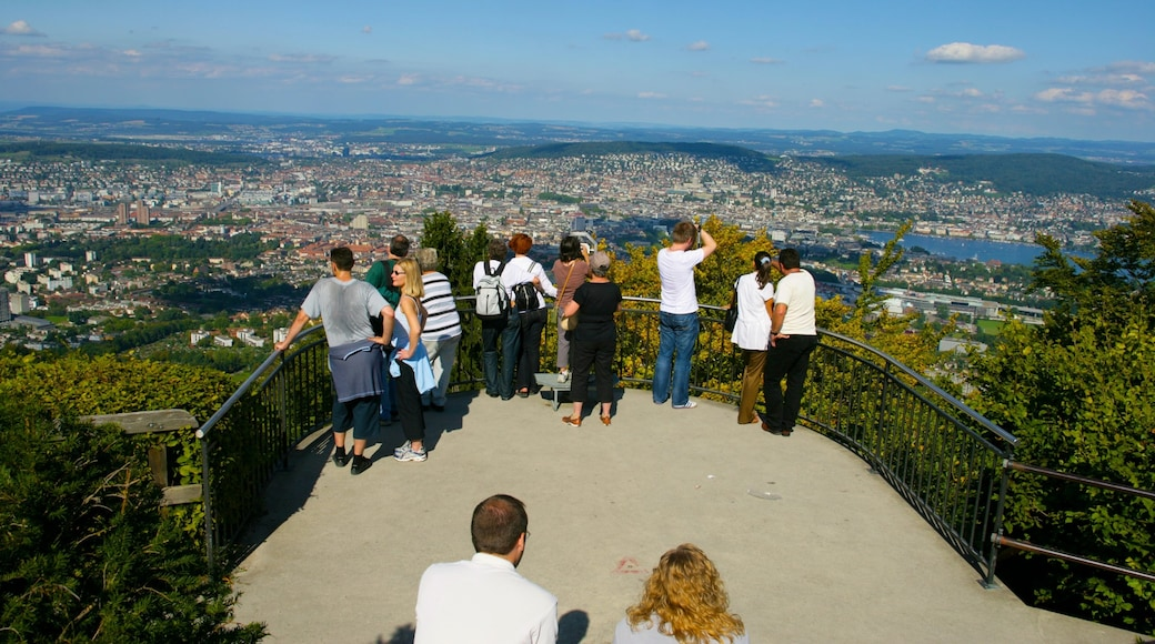 Zurich showing views and a city as well as a large group of people