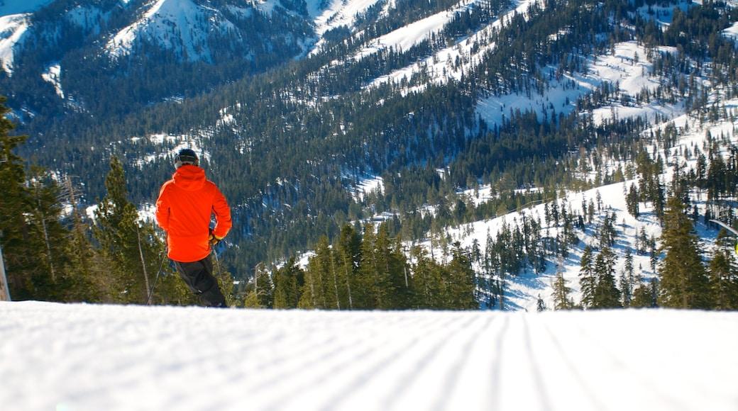 Alpine Meadows Ski Resort showing mountains, snow skiing and snow