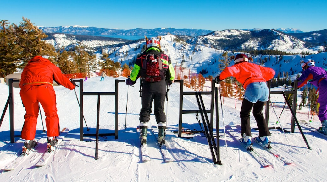 Squaw Valley Resort featuring snow, mountains and snow skiing