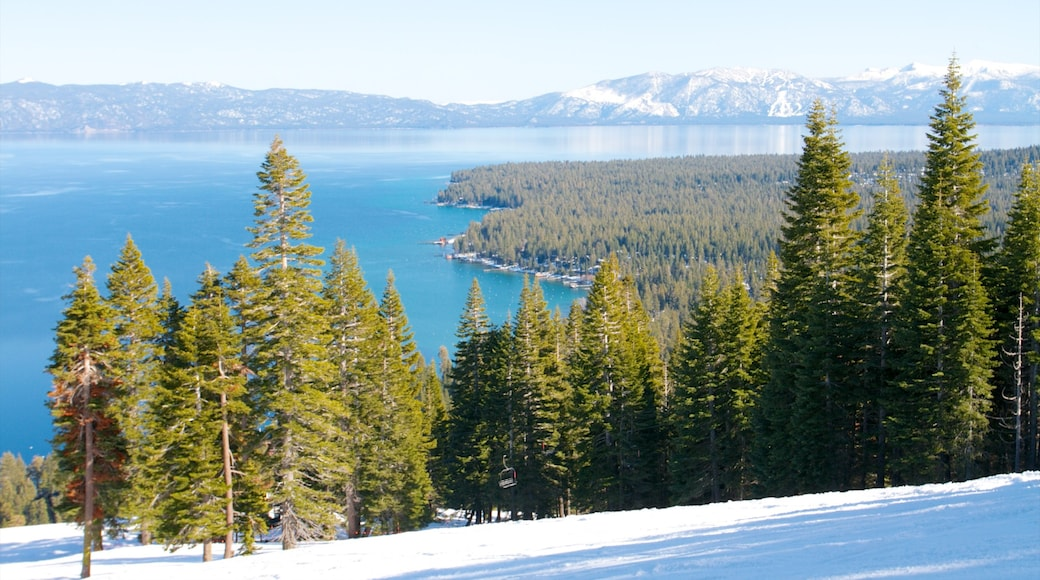 Homewood Mountain Resort showing landscape views, a lake or waterhole and snow