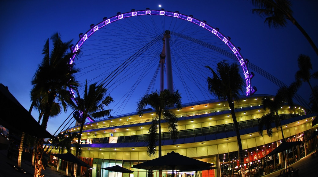 Singapore Flyer which includes modern architecture, rides and a city